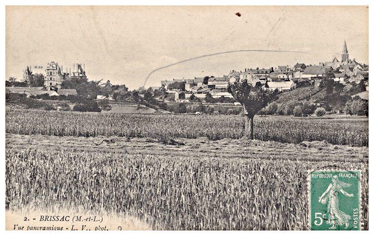 Carte postale de Brissac, vue panoramique.