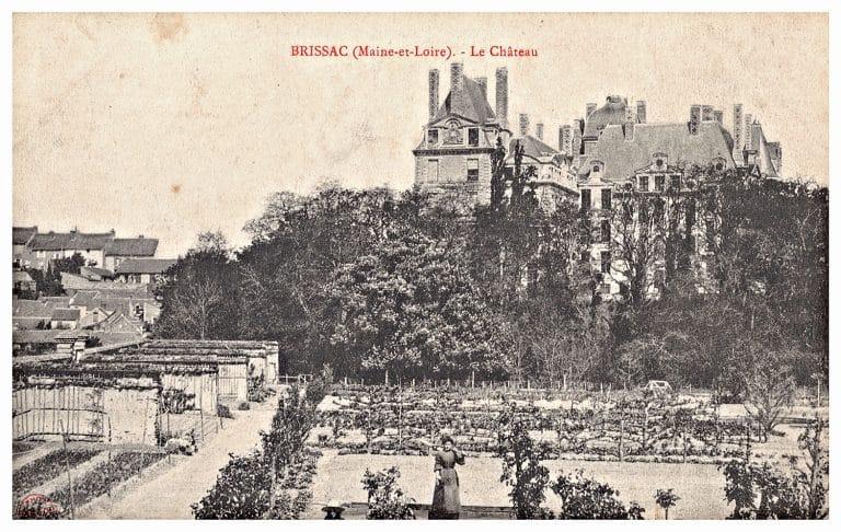 Carte postale du Château de Brissac, vu des jardins ouest.